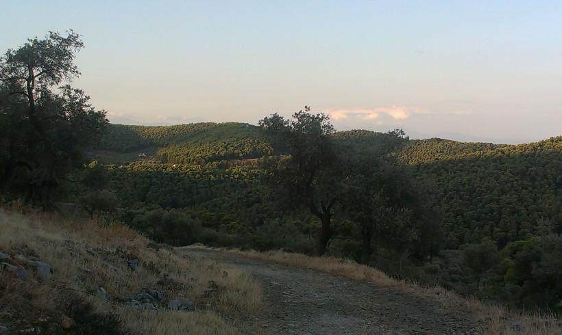2013-08-05 07.14.14